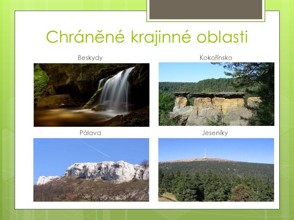 Chráněné krajinné oblasti Beskydy Kokořínsko Pálava Jeseníky