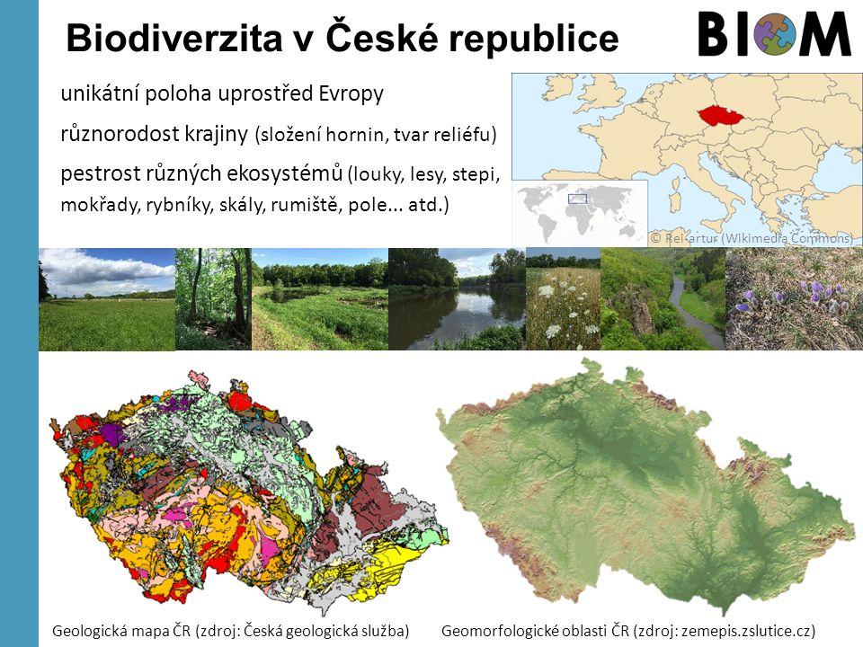 Biodiverzita v České republice Geologická mapa ČR (zdroj: Česká geologická služba) unikátní poloha uprostřed Evropy různorodost krajiny (složení horni