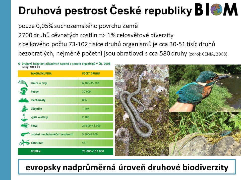 Druhová pestrost České republiky pouze 0,05% suchozemského povrchu Země 2700 druhů cévnatých rostlin => 1% celosvětové diverzity z celkového počtu 73-