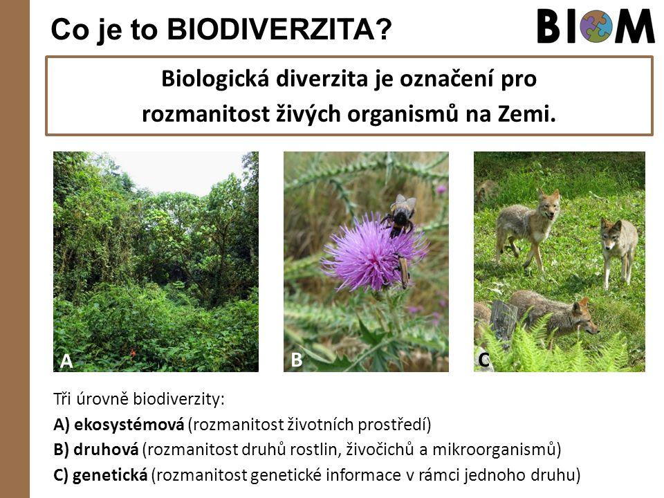 Co je to BIODIVERZITA? Biologická diverzita je označení pro rozmanitost živých organismů na Zemi. Tři úrovně biodiverzity: A) ekosystémová (rozmanitos