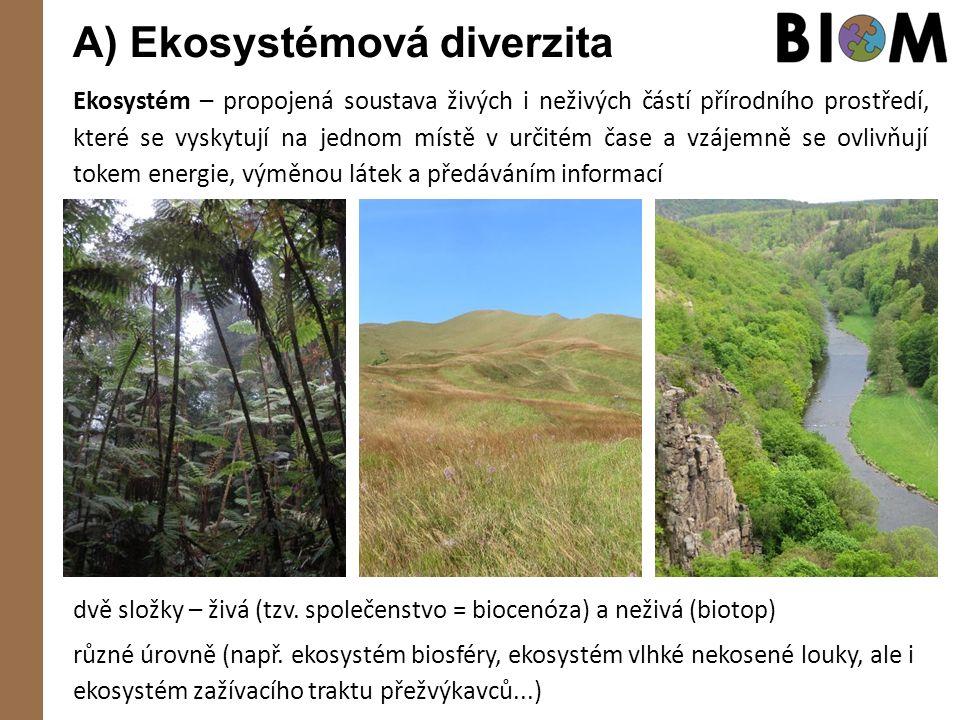 A) Ekosystémová diverzita Ekosystém – propojená soustava živých i neživých částí přírodního prostředí, které se vyskytují na jednom místě v určitém čase a vzájemně se ovlivňují tokem energie, výměnou látek a předáváním informací dvě složky – živá (tzv.