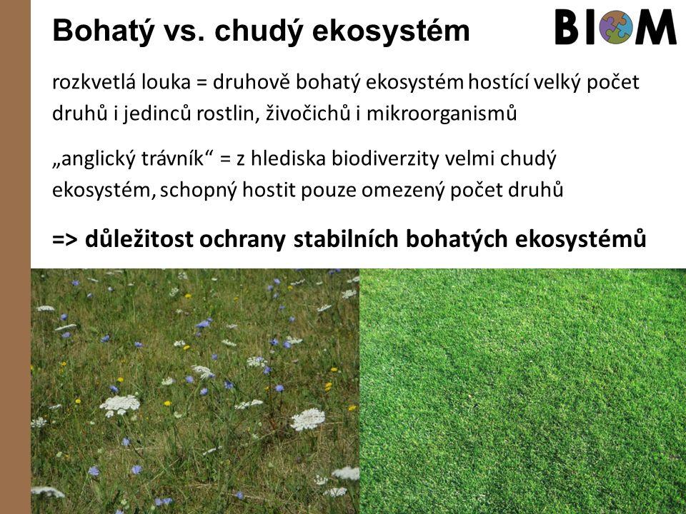 """Bohatý vs. chudý ekosystém rozkvetlá louka = druhově bohatý ekosystém hostící velký počet druhů i jedinců rostlin, živočichů i mikroorganismů """"anglick"""