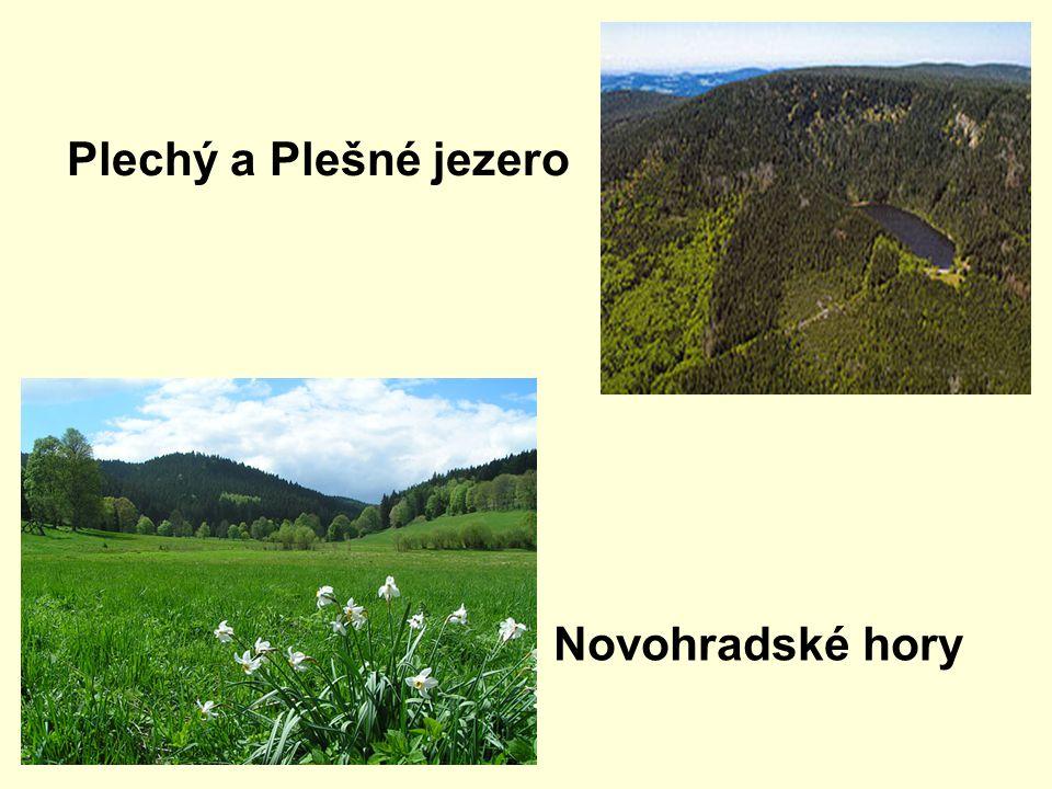 Plechý a Plešné jezero Novohradské hory