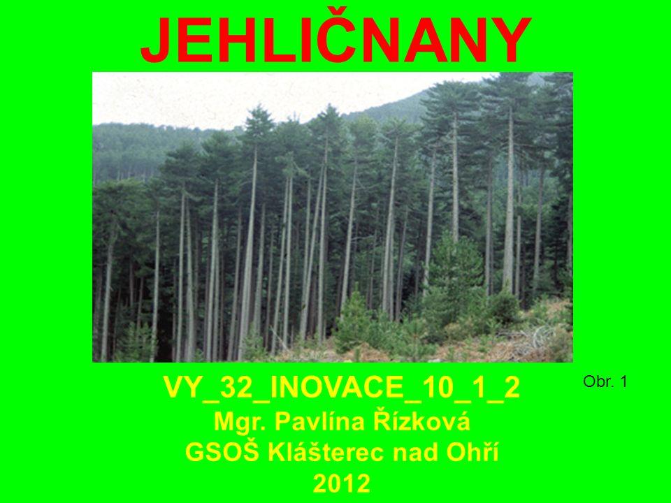 JEHLIČNANY Obr. 1 VY_32_INOVACE_10_1_2 Mgr. Pavlína Řízková GSOŠ Klášterec nad Ohří 2012