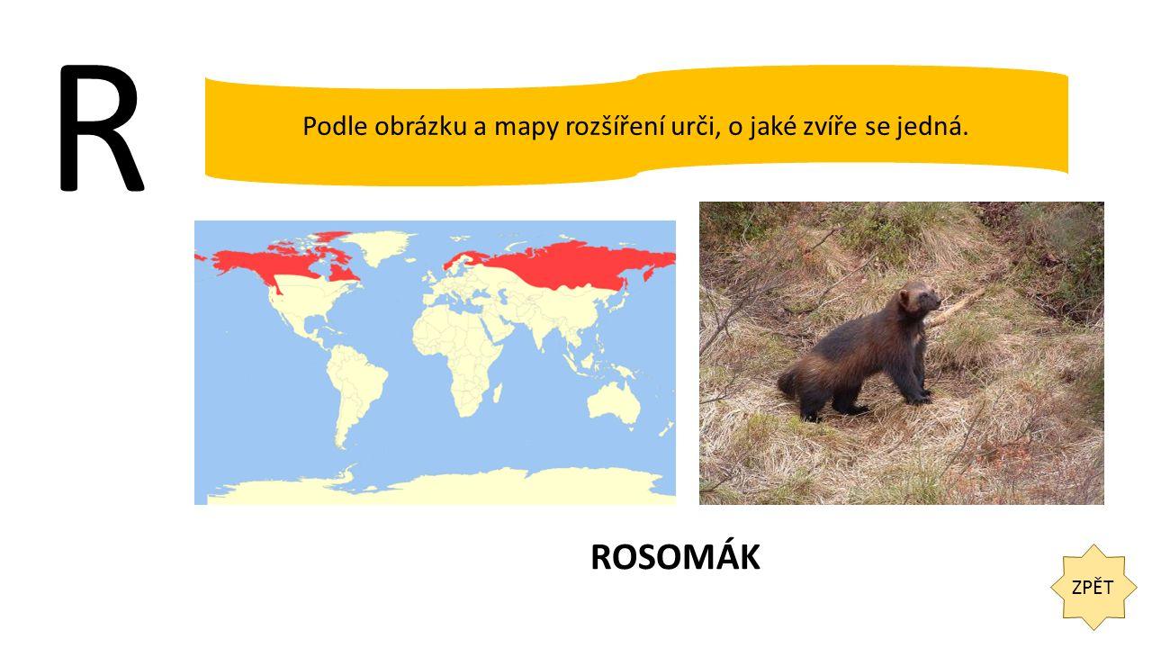 R ZPĚT Podle obrázku a mapy rozšíření urči, o jaké zvíře se jedná. ROSOMÁK