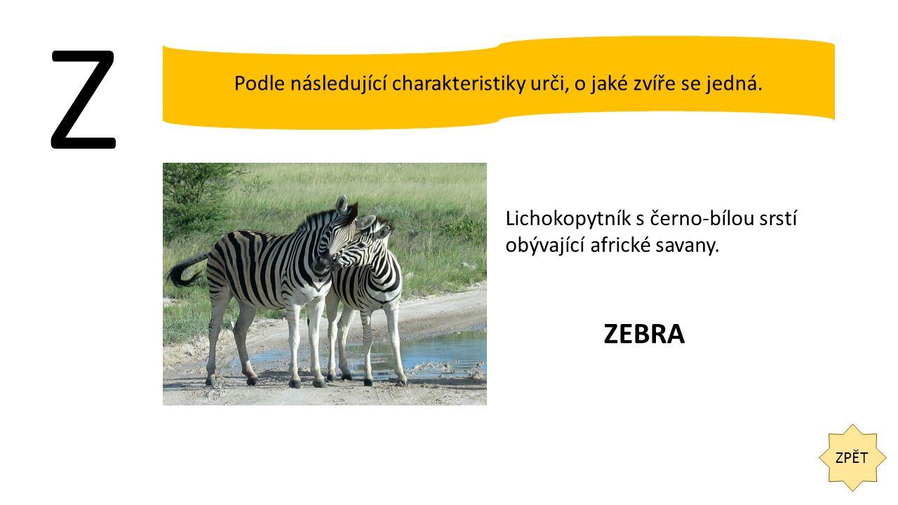 Z ZPĚT Podle následující charakteristiky urči, o jaké zvíře se jedná. Lichokopytník s černo-bílou srstí obývající africké savany. ZEBRA