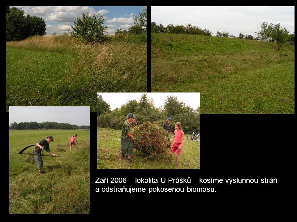 Září 2006 – lokalita U Prášků – kosíme výslunnou stráň a odstraňujeme pokosenou biomasu.