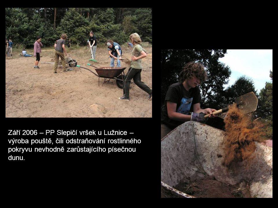 Září 2006 – PP Slepičí vršek u Lužnice – výroba pouště, čili odstraňování rostlinného pokryvu nevhodně zarůstajícího písečnou dunu.