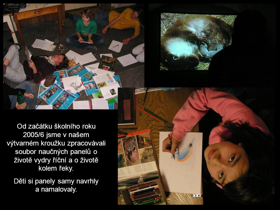 Od začátku školního roku 2005/6 jsme v našem výtvarném kroužku zpracovávali soubor naučných panelů o životě vydry říční a o životě kolem řeky.