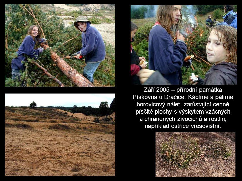 V květnu 2006 proběhlo v Českém Krumlově krajské kolo přírodovědné soutěže Zelená stezka – Zlatý list.