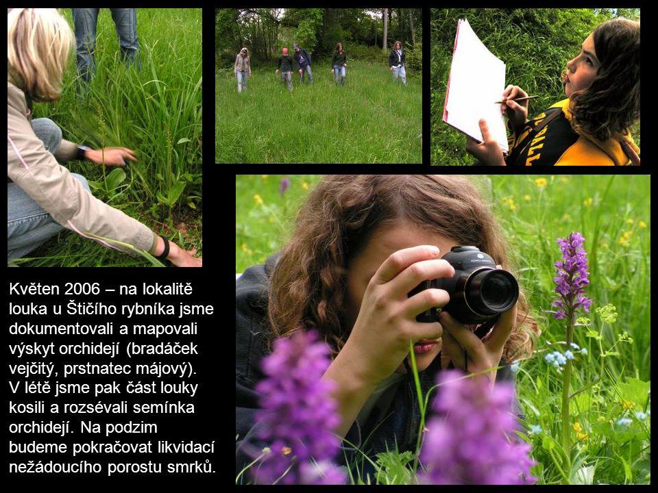 Květen 2006 – na lokalitě louka u Štičího rybníka jsme dokumentovali a mapovali výskyt orchidejí (bradáček vejčitý, prstnatec májový).