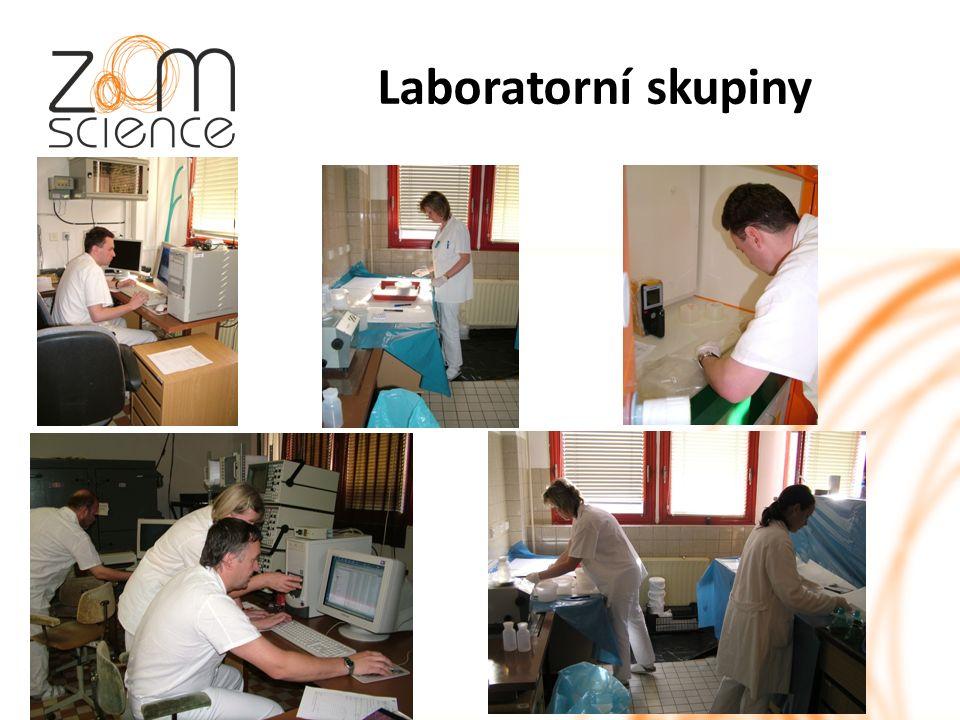 Laboratorní skupiny