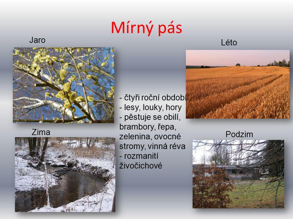 Mírný pás Jaro Léto Podzim Zima - čtyři roční období - lesy, louky, hory - pěstuje se obilí, brambory, řepa, zelenina, ovocné stromy, vinná réva - rozmanití živočichové