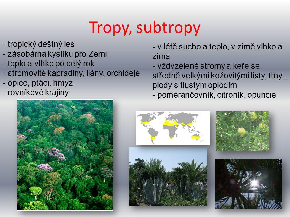 Tropy, subtropy - tropický deštný les - zásobárna kyslíku pro Zemi - teplo a vlhko po celý rok - stromovité kapradiny, liány, orchideje - opice, ptáci, hmyz - rovníkové krajiny - v létě sucho a teplo, v zimě vlhko a zima - vždyzelené stromy a keře se středně velkými kožovitými listy, trny, plody s tlustým oplodím - pomerančovník, citroník, opuncie