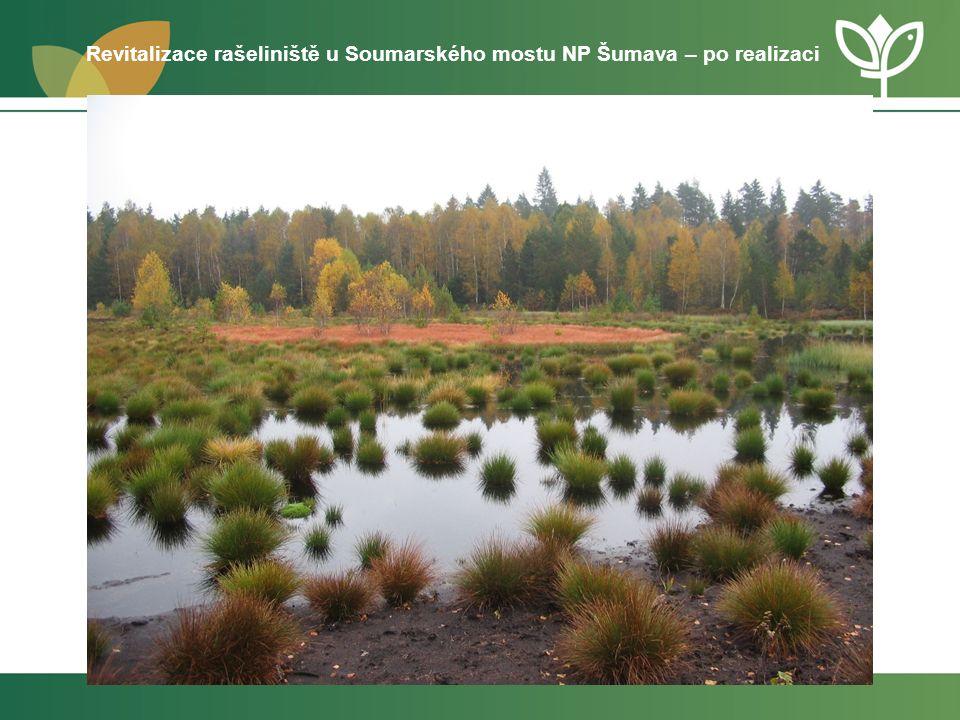 4.2: POSÍLIT BIODIVERZITU Aktivita 4.2.1 Péče o vzácné druhy (ve volné krajině i urbanizovaném prostředí) a jejich biotopy vč.