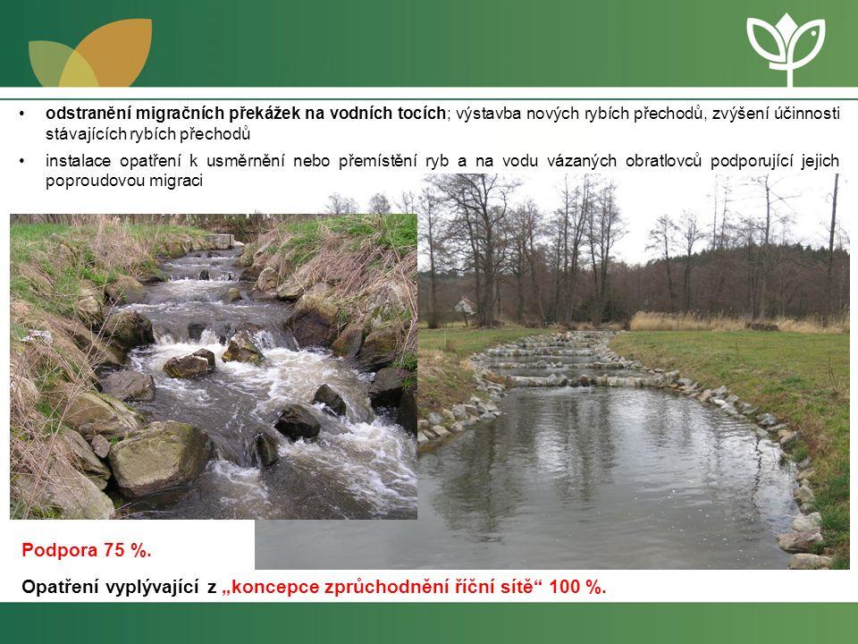 Revitalizace Studenského potoka Dotace na opatření 4.4 - 60 % z celkových způsobilých výdajů Výdaje na vodní prvky – max.