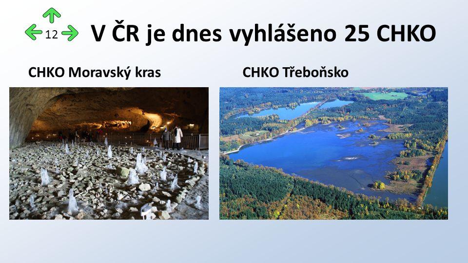 V ČR je dnes vyhlášeno 25 CHKO CHKO Moravský krasCHKO Třeboňsko 12