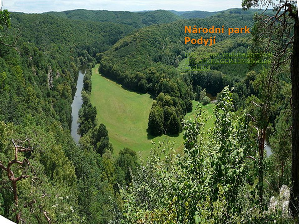 Národní park Šumava http://www.youtube.com/user /npsumava?ob=0&feature=re sults_main