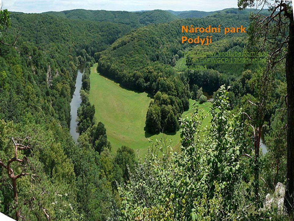 Národní park Podyjí http://www.youtube.com/wat ch?v=FKFWGCPi13M&feature =related