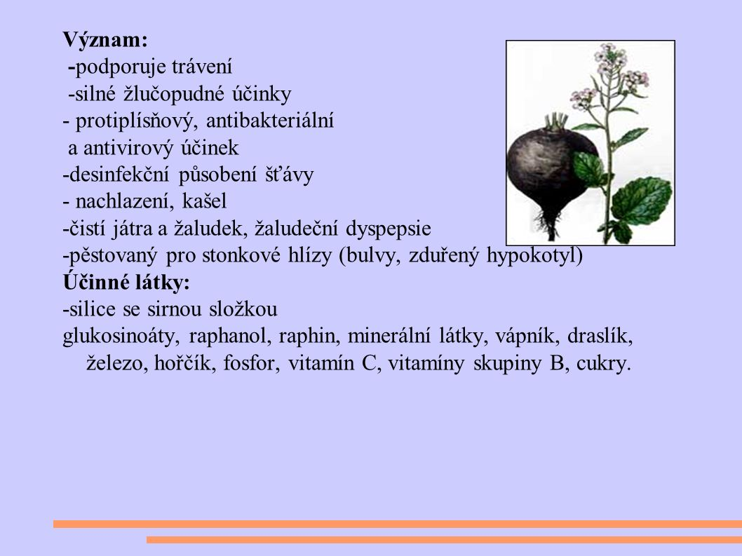 Význam: -podporuje trávení -silné žlučopudné účinky - protiplísňový, antibakteriální a antivirový účinek -desinfekční působení šťávy - nachlazení, kašel -čistí játra a žaludek, žaludeční dyspepsie -pěstovaný pro stonkové hlízy (bulvy, zduřený hypokotyl) Účinné látky: -silice se sirnou složkou glukosinoáty, raphanol, raphin, minerální látky, vápník, draslík, železo, hořčík, fosfor, vitamín C, vitamíny skupiny B, cukry.