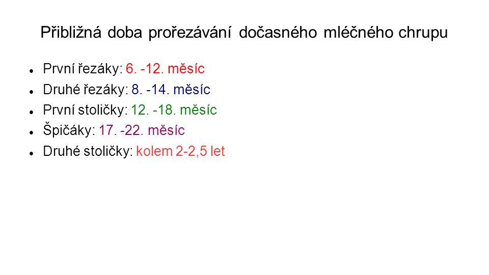 Přibližná doba prořezávání dočasného mléčného chrupu První řezáky: 6.