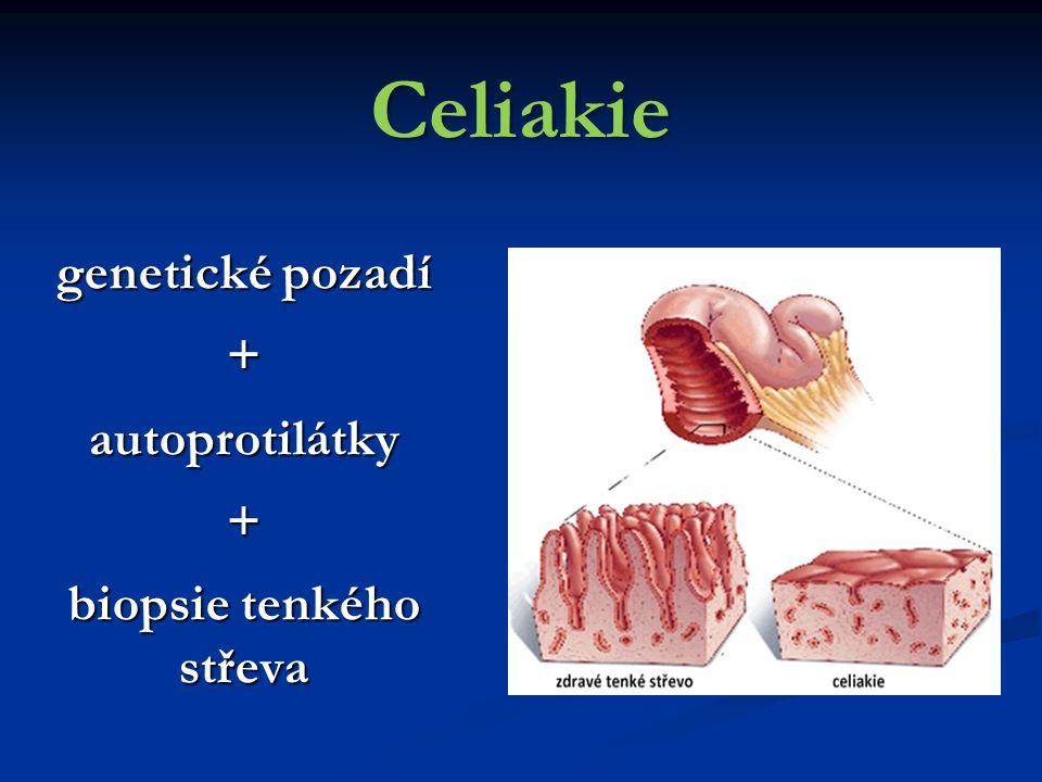 Celiakie genetické pozadí +autoprotilátky+ biopsie tenkého střeva
