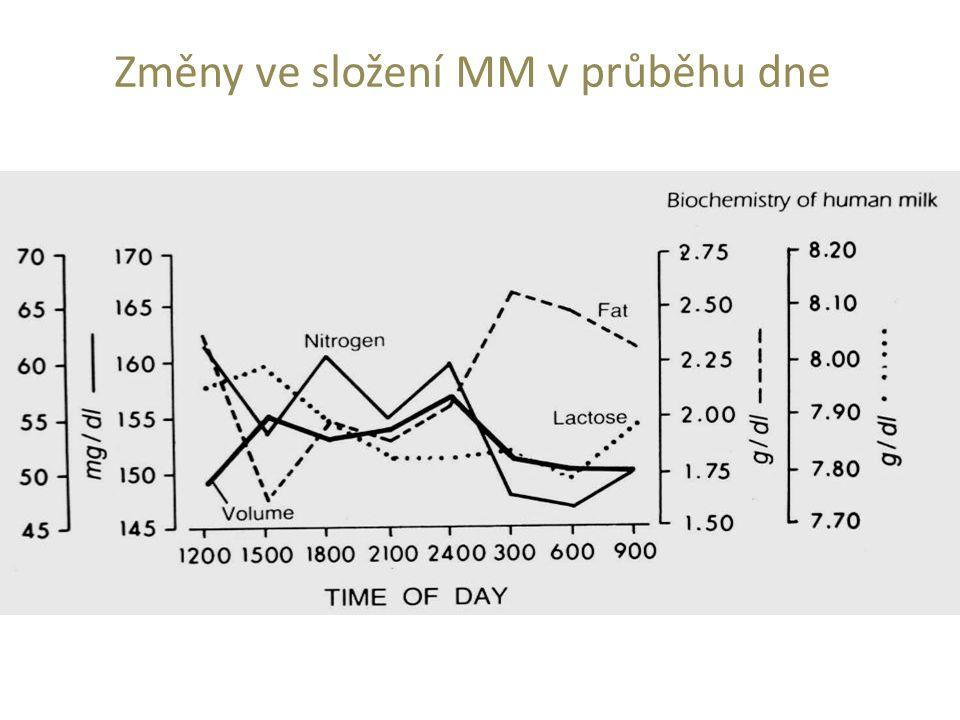 Změny ve složení MM v průběhu dne