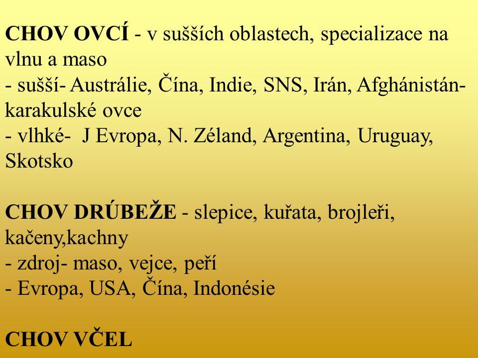 CHOV OVCÍ - v sušších oblastech, specializace na vlnu a maso - sušší- Austrálie, Čína, Indie, SNS, Irán, Afghánistán- karakulské ovce - vlhké- J Evropa, N.