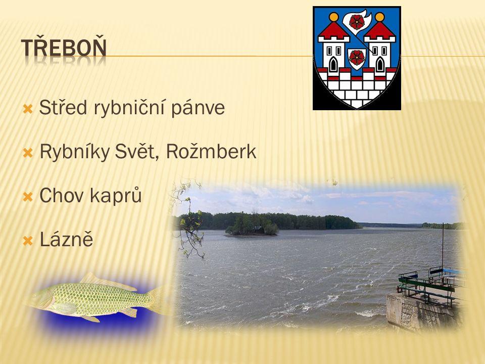  Střed rybniční pánve  Rybníky Svět, Rožmberk  Chov kaprů  Lázně