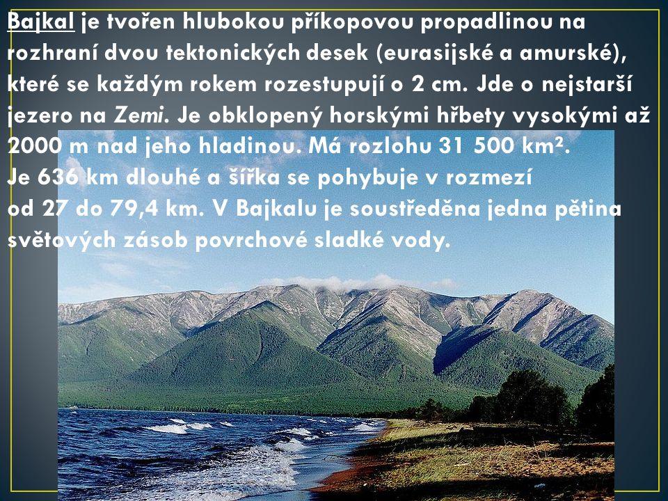 Bajkal je tvořen hlubokou příkopovou propadlinou na rozhraní dvou tektonických desek (eurasijské a amurské), které se každým rokem rozestupují o 2 cm.
