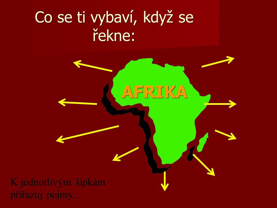 Co se ti vybaví, když se řekne: AFRIKA AFRIKA K jednotlivým šipkám přiřazuj pojmy…