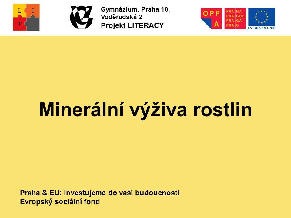 Praha & EU: Investujeme do vaší budoucnosti Evropský sociální fond Gymnázium, Praha 10, Voděradská 2 Projekt LITERACY Minerální výživa rostlin