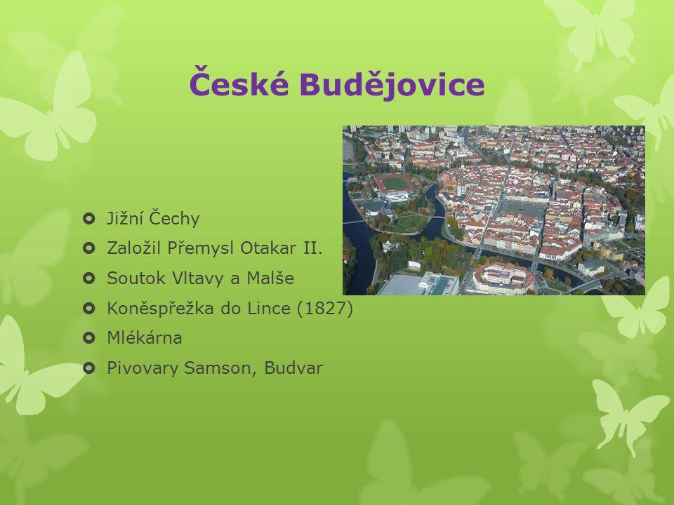 Jihlava  Česko-moravská hranice  Historické památky  ZOO