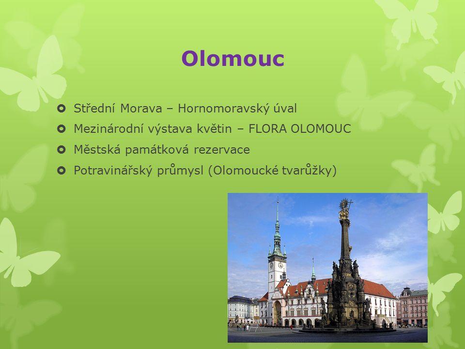 Ostrava  Severní Morava  Slezsko – Moravská hranice  Soutok Odry, Ostravice a Opavy  Znečištěné ovzduší - těžký průmysl (těžba uhlí, hutě, chemička)