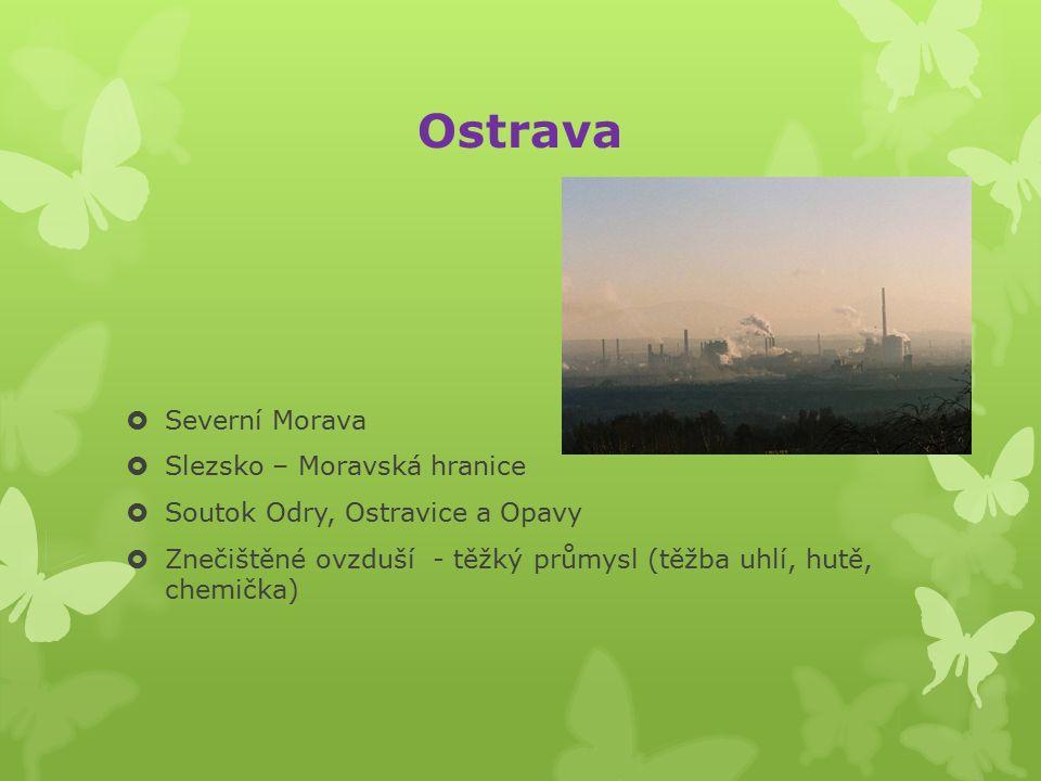 Zlín  Východní Morava  Baťa – obuvnický průmysl  Filmové ateliéry (animovaný film)  Mezinárodní festival filmů pro děti a mládež