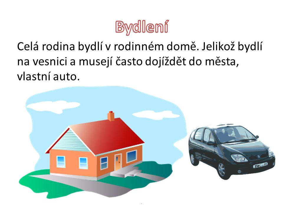 Celá rodina bydlí v rodinném domě. Jelikož bydlí na vesnici a musejí často dojíždět do města, vlastní auto..