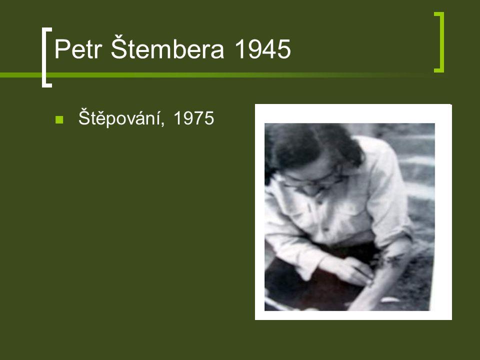 Petr Štembera 1945 Štěpování, 1975