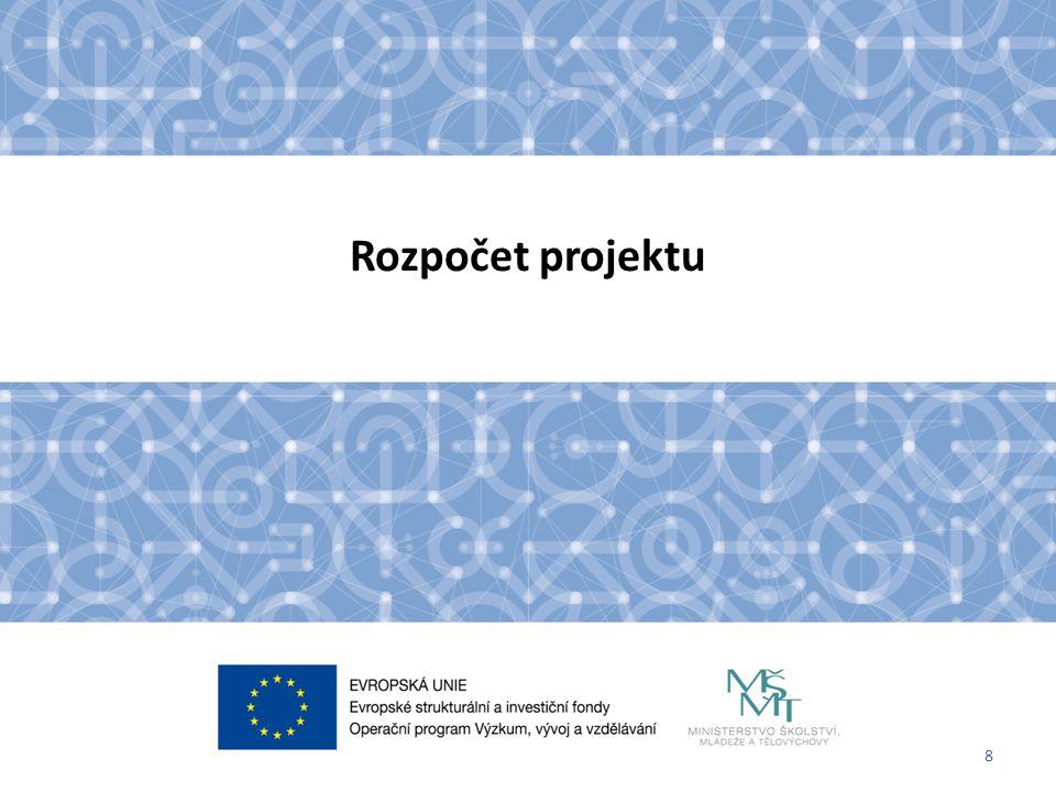 8 Rozpočet projektu