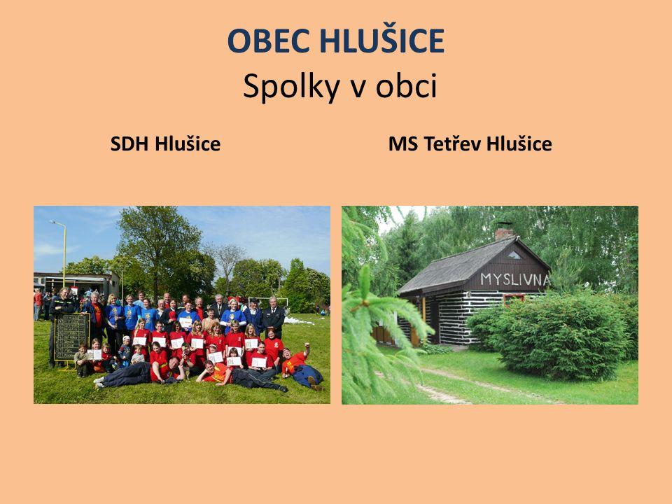 OBEC HLUŠICE Spolky v obci SDH Hlušice MS Tetřev Hlušice