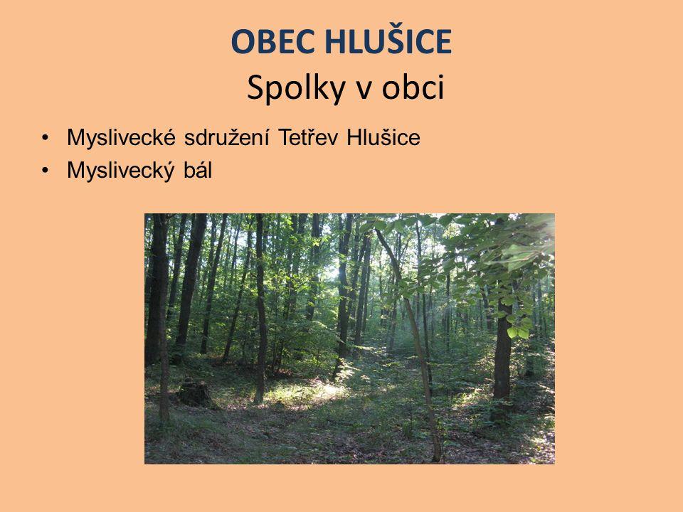 OBEC HLUŠICE Spolky v obci Myslivecké sdružení Tetřev Hlušice Myslivecký bál