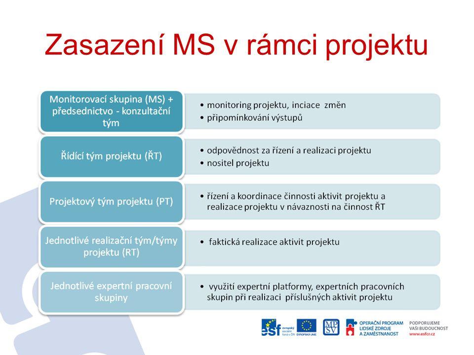 Zasazení MS v rámci projektu
