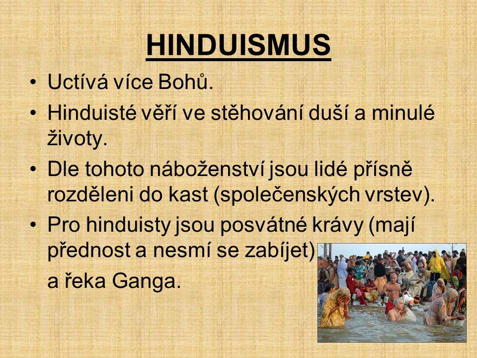 HINDUISMUS Uctívá více Bohů. Hinduisté věří ve stěhování duší a minulé životy.