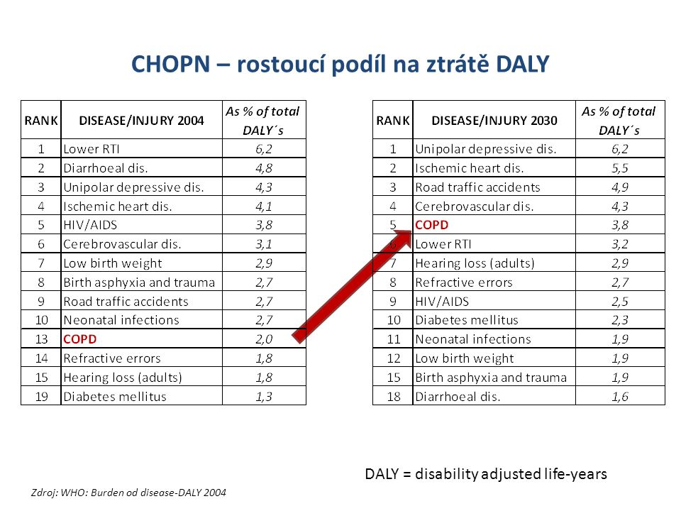 CHOPN – rostoucí podíl na ztrátě DALY Zdroj: WHO: Burden od disease-DALY 2004 DALY = disability adjusted life-years