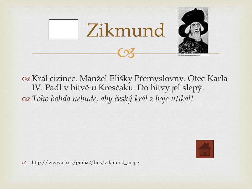   Král cizinec. Manžel Elišky Přemyslovny. Otec Karla IV.