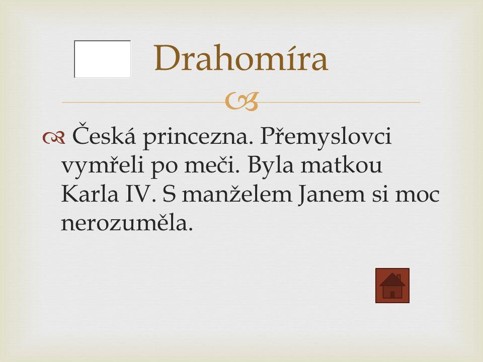   Česká princezna. Přemyslovci vymřeli po meči.