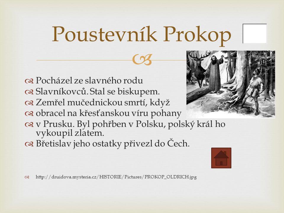   Pocházel ze slavného rodu  Slavníkovců. Stal se biskupem.