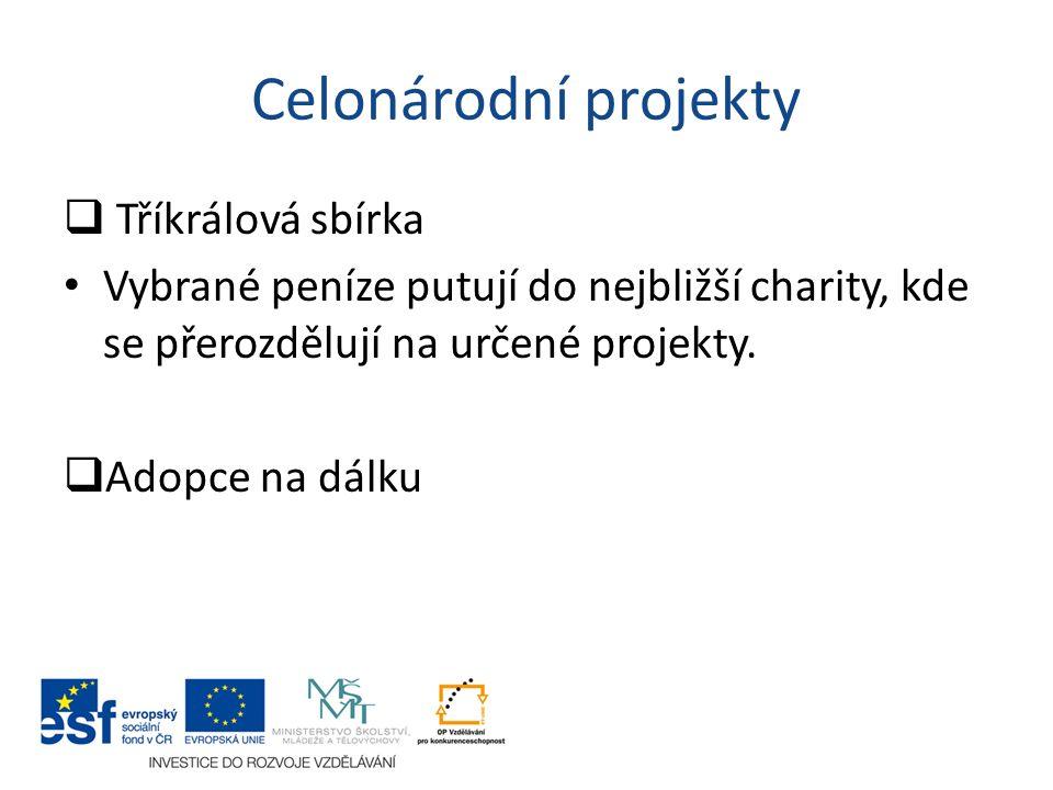 Celonárodní projekty  Tříkrálová sbírka Vybrané peníze putují do nejbližší charity, kde se přerozdělují na určené projekty.  Adopce na dálku