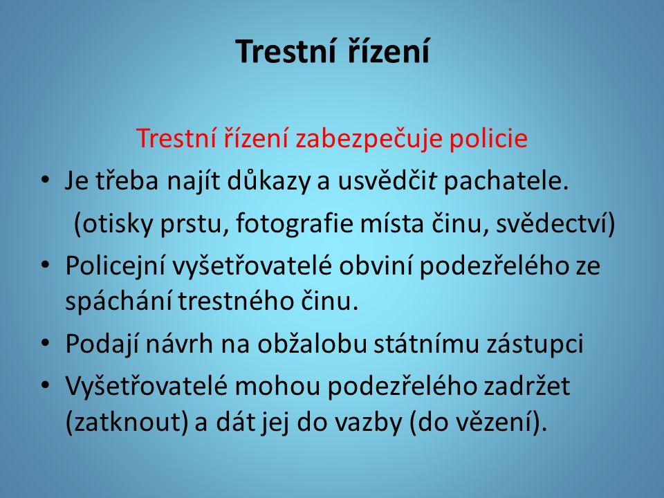 Trestní řízení Trestní řízení zabezpečuje policie Je třeba najít důkazy a usvědčit pachatele.