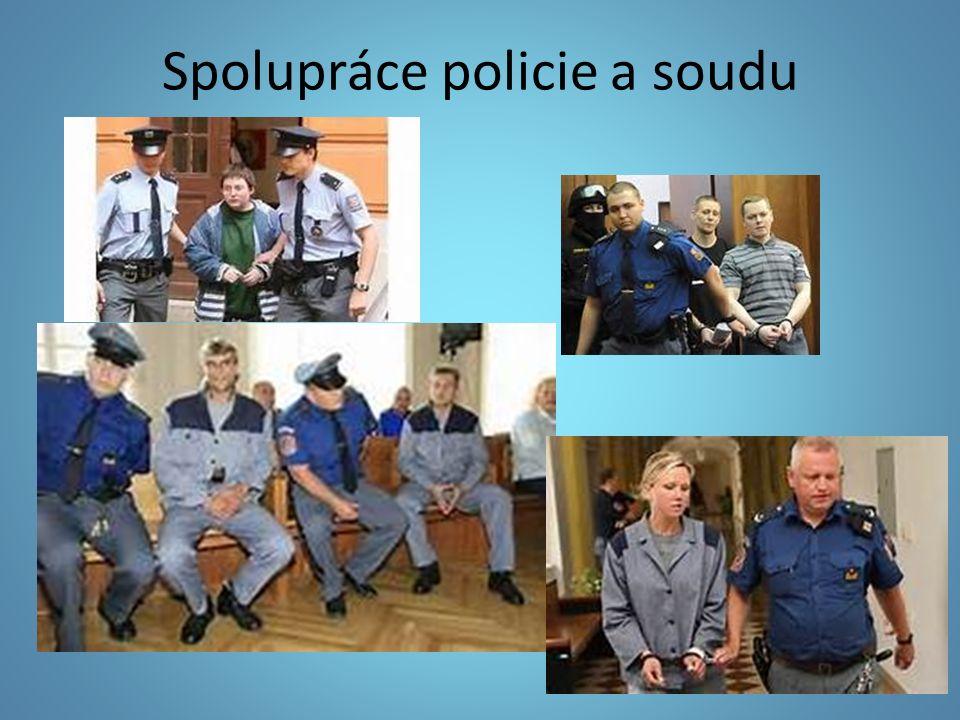 Spolupráce policie a soudu