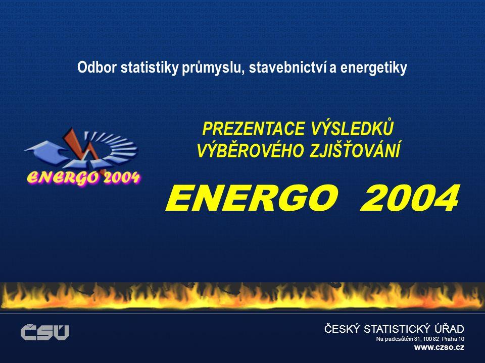 ČESKÝ STATISTICKÝ ÚŘAD Na padesátém 81, 100 82 Praha 10 www.czso.cz JAKÉ BYLY CÍLE ZJIŠŤOVÁNÍ ENERGO 2004.